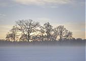 Wetter Foto des Tages
